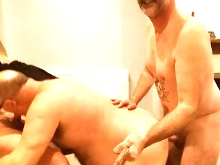 bear Pro does exasperation 2 mouth, gets unperceived up cum amateur